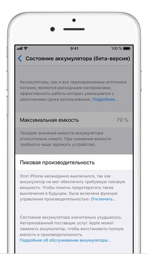 Condition monitoring of the accumulator and setup of performance in iOS 11.3. Photo: cnews.ru