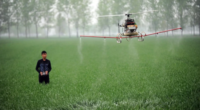 The operator manages the drone for irrigation of a plant